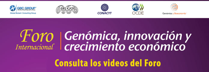 Foro Internacional Videos